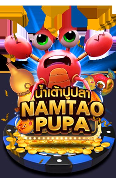 numtaopupa homepage